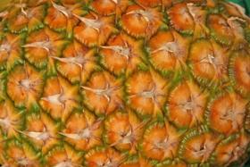 Ananas, Bromelain, Pineapple, Bromeliaceae